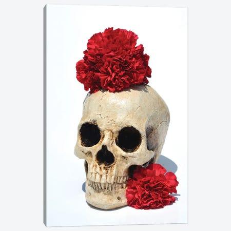 Skull & Carnations Canvas Print #JTN33} by Jonathan Brooks Canvas Art Print