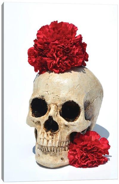 Skull & Carnations Canvas Art Print