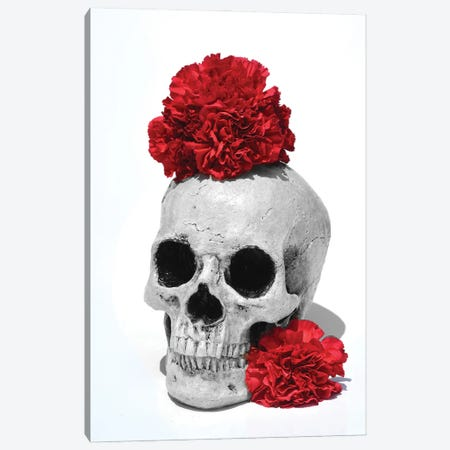 Skull & Carnations Black & White Canvas Print #JTN34} by Jonathan Brooks Canvas Artwork
