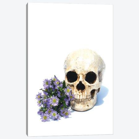Skull & Daisies 3-Piece Canvas #JTN35} by Jonathan Brooks Canvas Art
