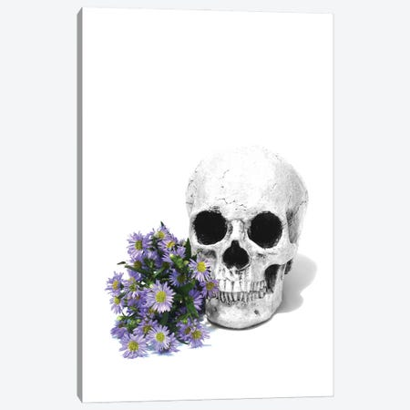 Skull & Daisies Black & White Canvas Print #JTN36} by Jonathan Brooks Canvas Wall Art