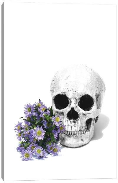 Skull & Daisies Black & White Canvas Art Print