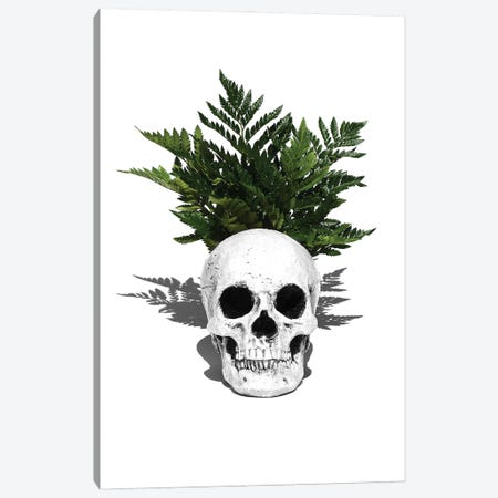Skull & Fern Black & White Canvas Print #JTN38} by Jonathan Brooks Canvas Art Print