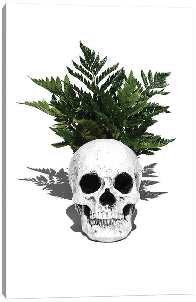 Skull & Fern Black & White Canvas Art Print