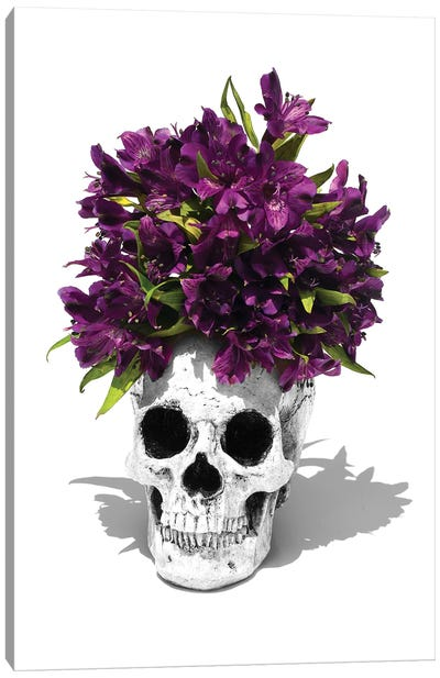 Skull & Lilies Black & White Canvas Art Print