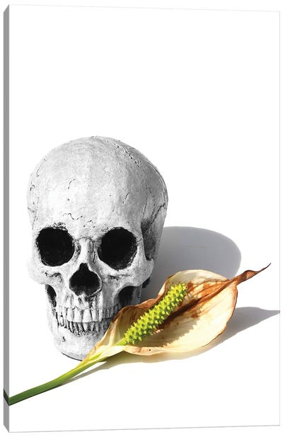Skull & Peace Lily Black & White Canvas Art Print