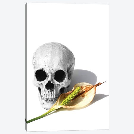 Skull & Peace Lily Black & White Canvas Print #JTN43} by Jonathan Brooks Canvas Artwork