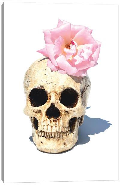 Skull & Pink Rose Canvas Art Print
