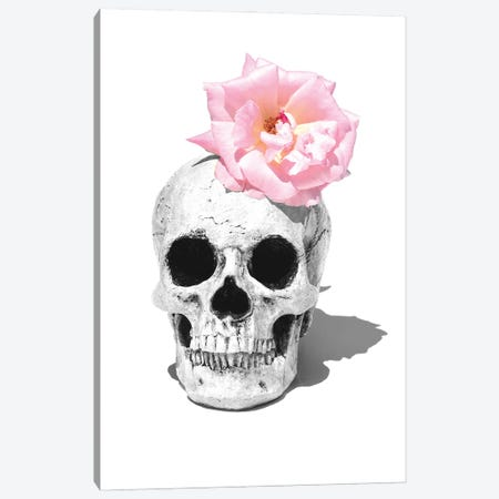 Skull & Pink Rose Black & White Canvas Print #JTN45} by Jonathan Brooks Canvas Art Print