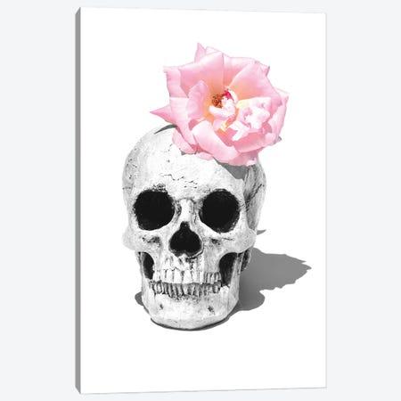 Skull & Pink Rose Black & White Canvas Print #JTN45} by Jonathan Brooks Canvas Art Print