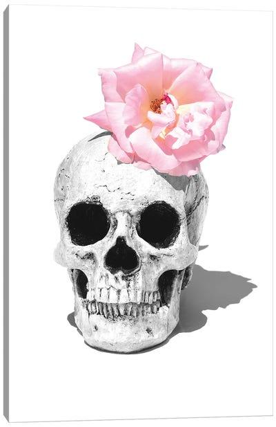Skull & Pink Rose Black & White Canvas Art Print