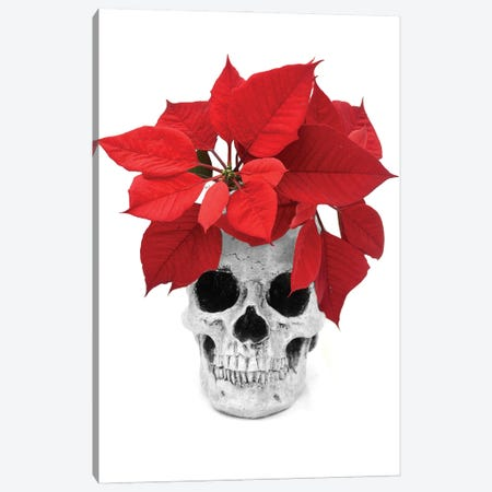 Skull & Poinsetta Black & White Canvas Print #JTN47} by Jonathan Brooks Canvas Print