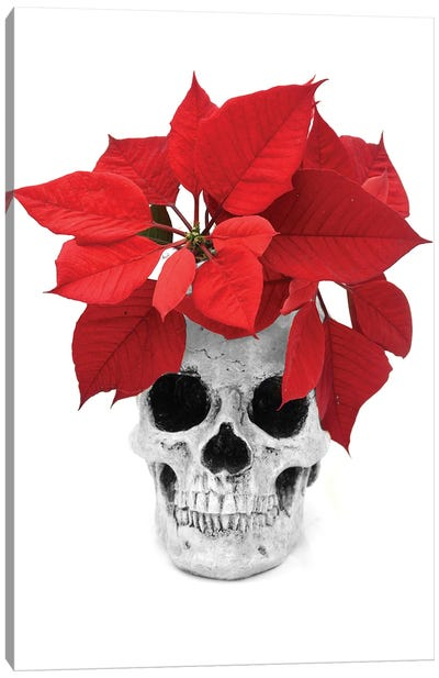 Skull & Poinsetta Black & White Canvas Art Print