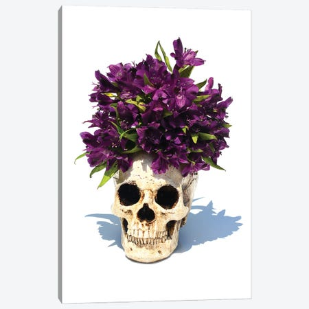 Skull & Purple Lilies Canvas Print #JTN48} by Jonathan Brooks Canvas Artwork
