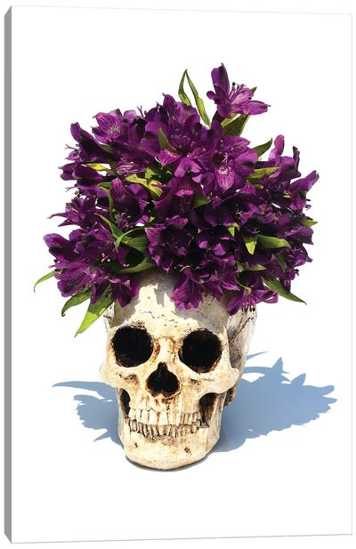 Skull & Purple Lilies Canvas Art Print
