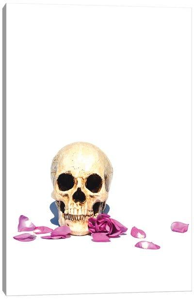 Skull & Purple Rose Canvas Art Print
