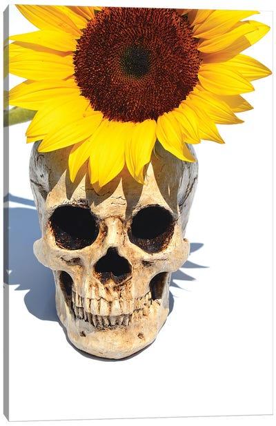 Skull & Sunflower Canvas Art Print