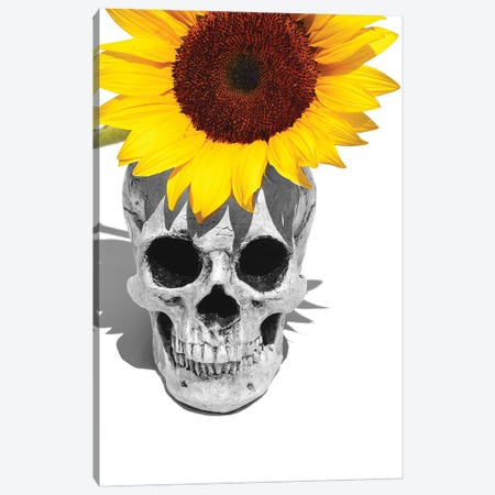 Skull & Sunflower Black & White Canvas Print #JTN52} by Jonathan Brooks Canvas Art Print