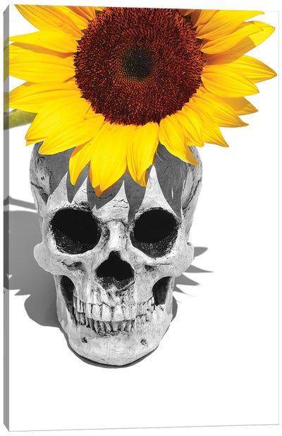 Skull & Sunflower Black & White Canvas Art Print