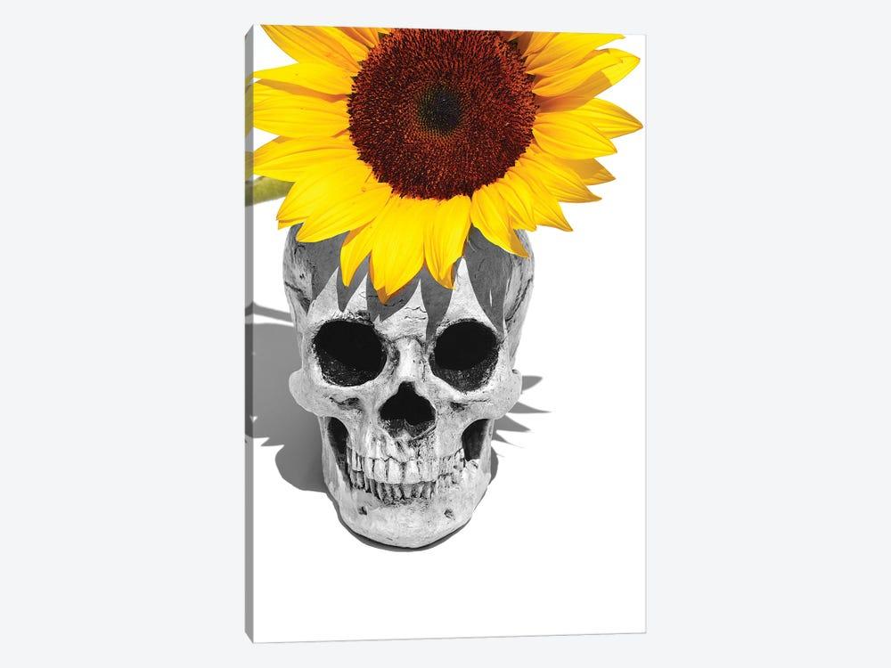 Skull & Sunflower Black & White by Jonathan Brooks 1-piece Art Print