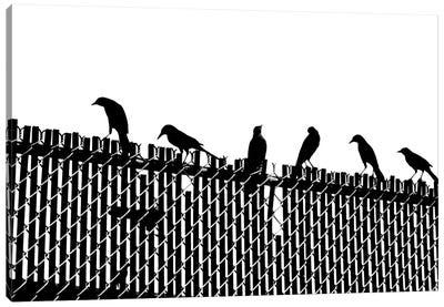 Bird Fence Canvas Art Print