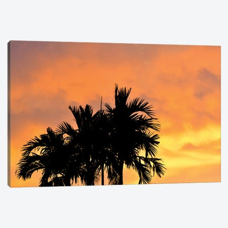 Heading For The Golden Hour Canvas Print #JTN77} by Jonathan Brooks Canvas Art