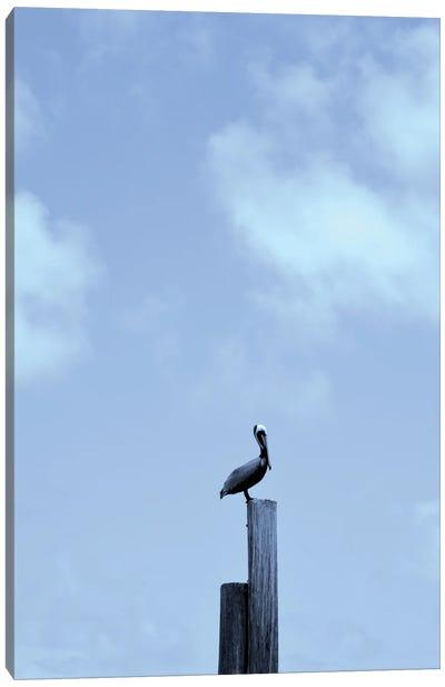Pelican Posts Canvas Art Print