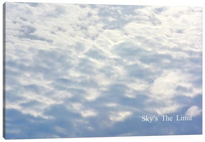 Skys The Limit Canvas Art Print
