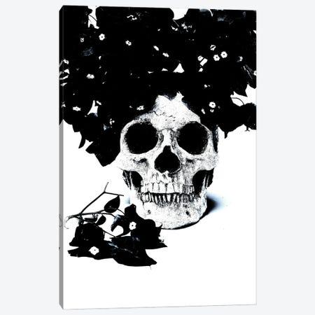 Black & Blue Skull I Canvas Print #JTN8} by Jonathan Brooks Canvas Art Print