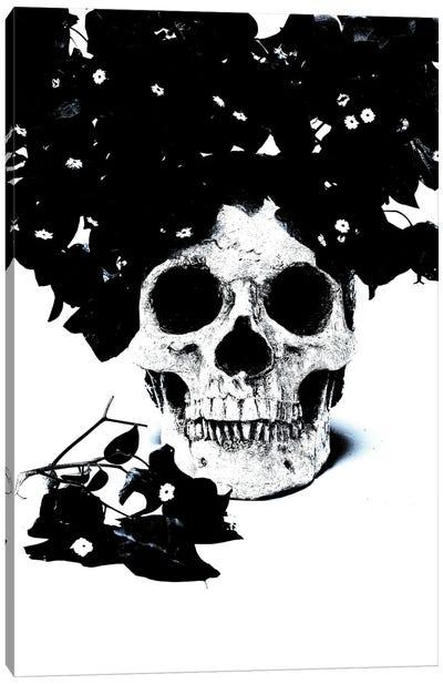 Black & Blue Skull I Canvas Art Print