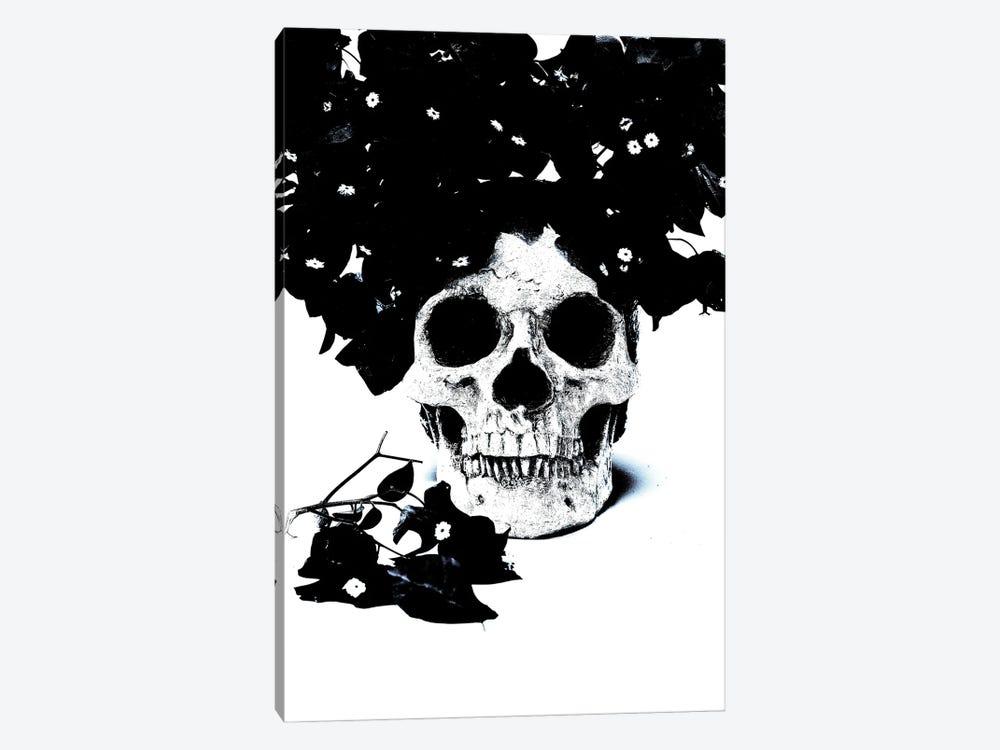 Black & Blue Skull I by Jonathan Brooks 1-piece Canvas Wall Art
