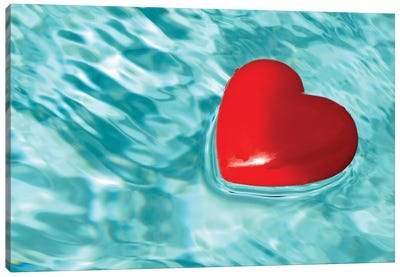 Love Floats Canvas Art Print