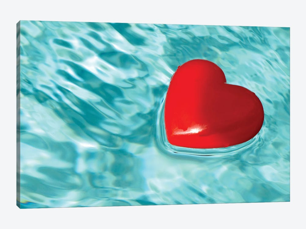 Love Floats by Jonathan Brooks 1-piece Canvas Art