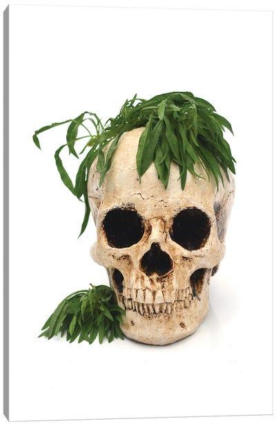 Skull & Weed Canvas Art Print