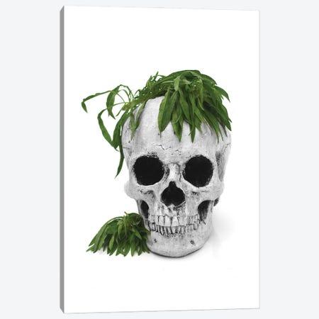 Skull & Weed Black & White Canvas Print #JTN97} by Jonathan Brooks Canvas Art