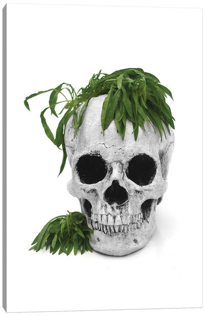 Skull & Weed Black & White Canvas Art Print
