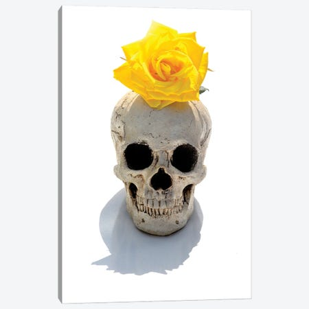 Skull & Yellow Rose Canvas Print #JTN98} by Jonathan Brooks Canvas Print