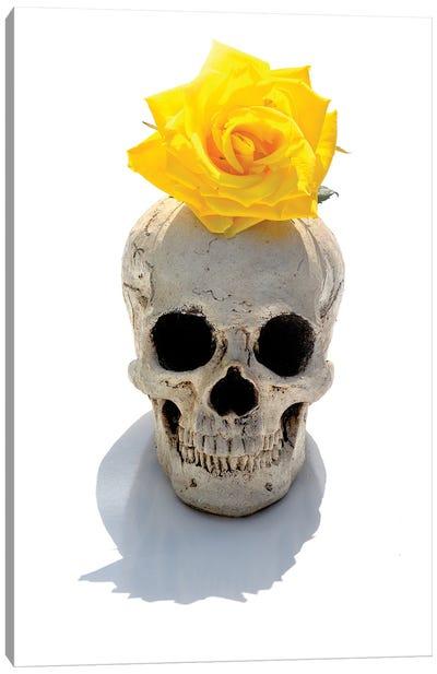 Skull & Yellow Rose Canvas Art Print