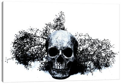 Black & Blue Skull II Canvas Art Print