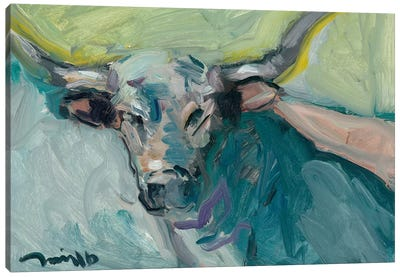 Longhorn Canvas Art Print