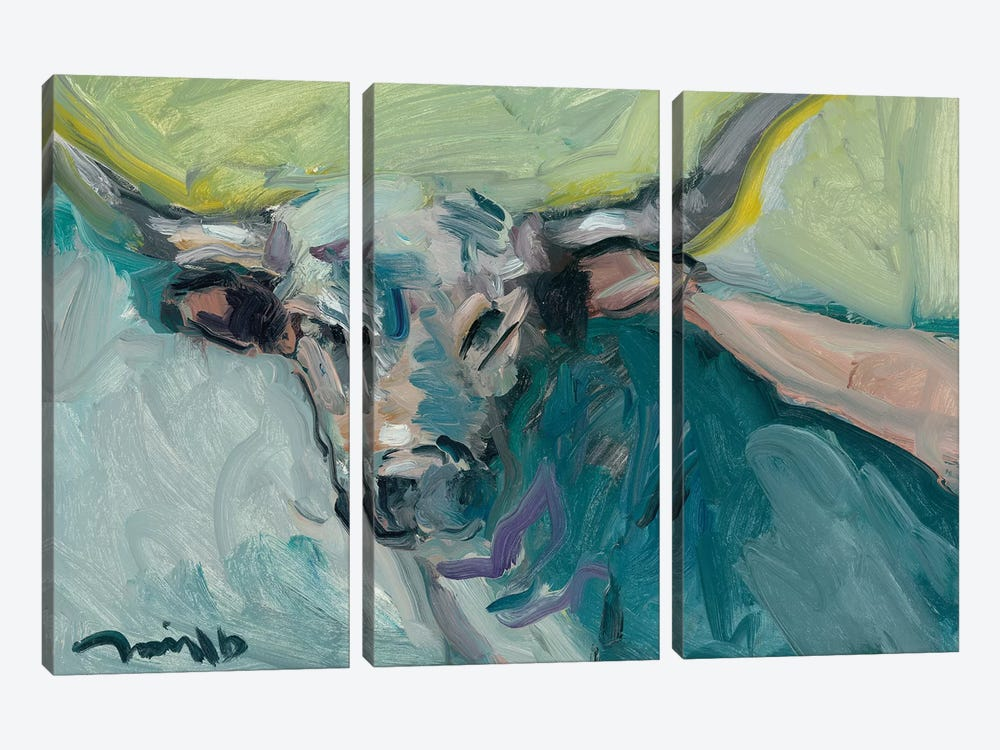 Longhorn by Jose Trujillo 3-piece Canvas Artwork
