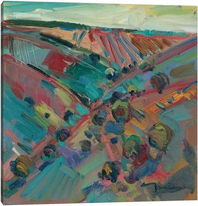 Rolling Hills Canvas Art Print