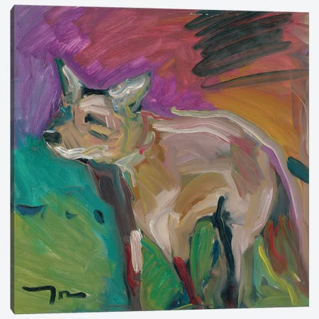 The Little Fox Canvas Print #JTR25} by Jose Trujillo Canvas Print