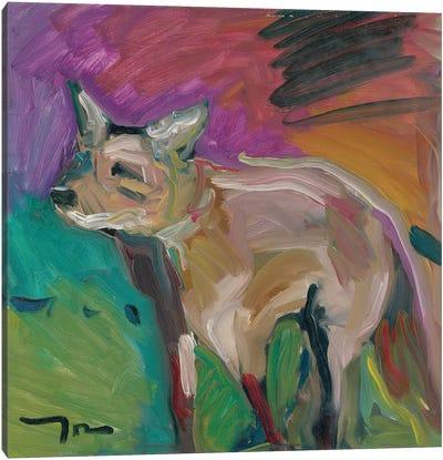 The Little Fox Canvas Art Print