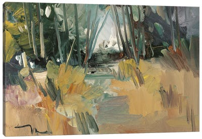 A New Day    Canvas Art Print