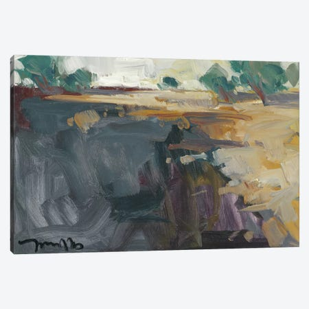 Abstract Landscape     Canvas Print #JTR29} by Jose Trujillo Canvas Art
