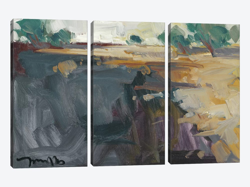 Abstract Landscape     3-piece Canvas Artwork
