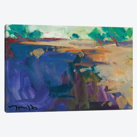 Abstract Landscape Canvas Print #JTR2} by Jose Trujillo Canvas Artwork