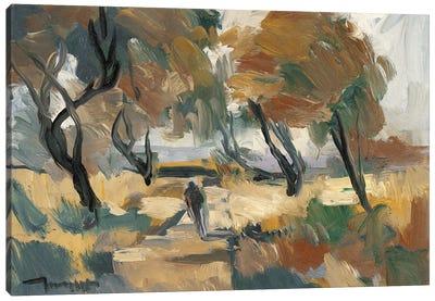 Early Walk   Canvas Art Print