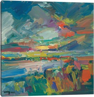 American Marshland Canvas Art Print